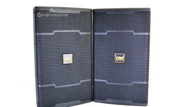 So sánh loa karaoke CAVS 625SEvà JBL JRX 225