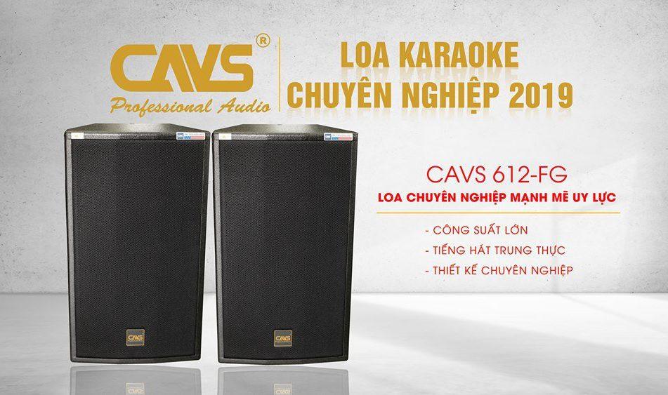 Loa karaoke chuyên nghiệp cho năm 2019