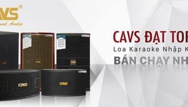 CAVS Professional Audio – Thương hiệu loa karaoke hay nhất 2018