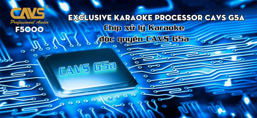 Chip xử lý âm thanh độc quyền của CAVS