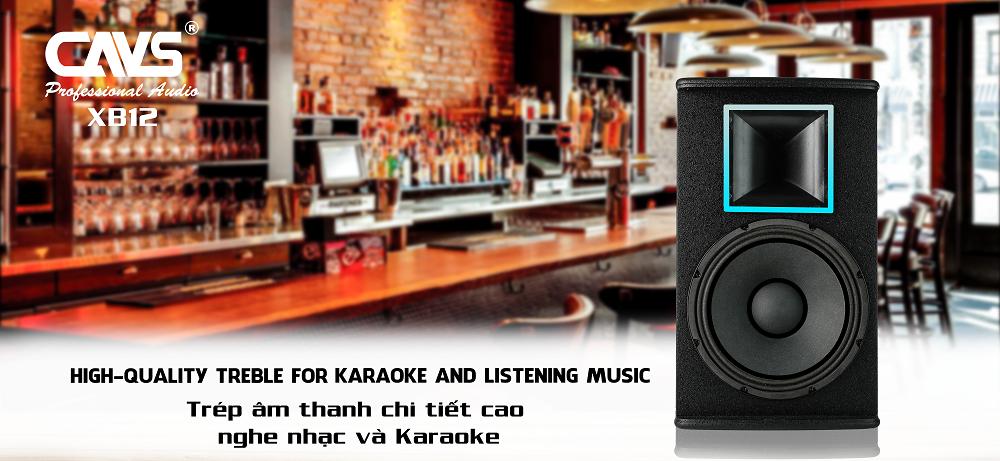 Loa Karaoke CAVS XB12