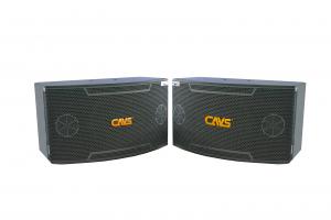 Loa Karaoke CAVS SP650
