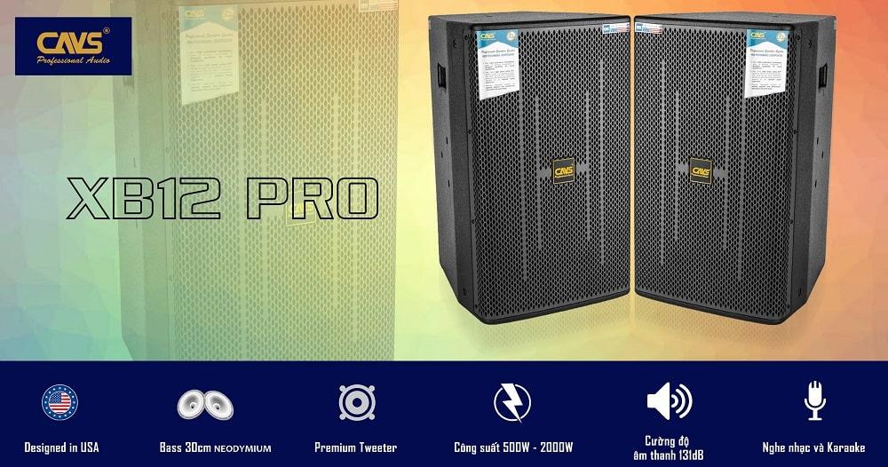 CAVS Full XB12 PRO